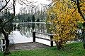 Zweimen (Leuna), der Teich.jpg