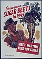 """Grow More Sugar Beets in 1945. Meet Wartime need for Sugar"" - NARA - 514424.jpg"