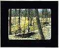"(""Lob's Wood,"" Carl H. Krippendorf house, 4949 Tealtown Road, Perintown (Milford), Ohio. LOC 7535987938.jpg"