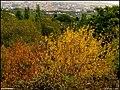 (((دیدنیهای پاییز مراغه))) - panoramio (6).jpg