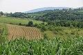 Žabari - opština Valjevo - zapadna Srbija - panorama 22.jpg