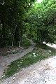 Бастіон Михайлівський (східний) IMG 9428.jpg