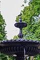 Ворона сіра на території Міського саду Києва. Фото 1.jpg