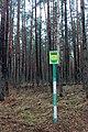 Глибокий ліс IMG 4284.jpg