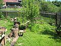 Двор т. Вали - panoramio.jpg