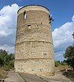 Дозона вежа (Вежа Вітовта) в с. Веселому.jpg
