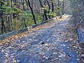 На схилах Дніпра - panoramio (2).jpg