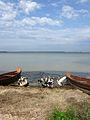 Озеро Світязь. 08.JPG
