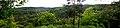 Панорама Трахтемирова.jpg
