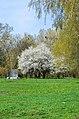 Парк ім. М. Чекмана у місті Хмельницькому поблизу Південного Бугу.jpg