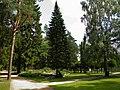 Рубенский парк Rubenes parks (26) - panoramio.jpg