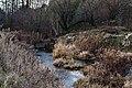 Річка Тартачка (зразу після злиття з р.Іловицею) 02.jpg