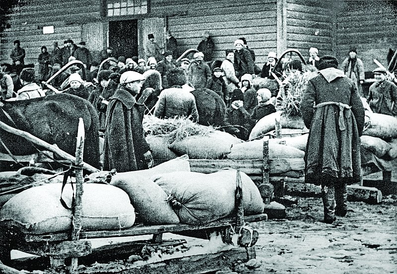 the causes and significance of the ukrainian holodomor in history Was the ukrainian starvation a genocide the famine of 1932–33 in ukraine, called the holodomor (a word coined in the late 1980s, meaning a famine deliberately initiated to cause suffering.