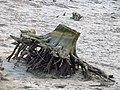 Спускання води в Святошинському озері. IMG 5870.jpg