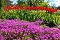 Хвилі квітів.jpg