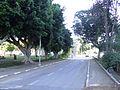 רחוב בשרונה.jpg