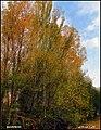 دیدنیهای پاییز مراغه - panoramio (1).jpg