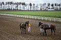 مسابقات اسب دوانی گنبد کاووس Horse racing In Iran- Gonbad-e Kavus 20.jpg
