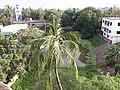 শালবাগান, রাজশাহী .jpg