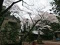 唐子神社 - panoramio (3).jpg