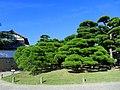 栗林公園 Ritsurin Park - panoramio (2).jpg