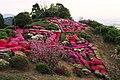 歌垣公園 - panoramio.jpg