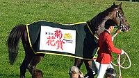 血統 キタサン ブラック キタサンブラックは種牡馬として成功する!?