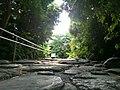 緑地への道 - panoramio.jpg