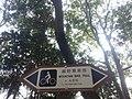 越野單車俓,往大棠段.jpeg