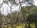 銀閣寺 - panoramio (22).jpg