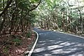 霧島公園線 20150923 - panoramio.jpg