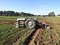 -2018-10-20 Massey Ferguson tractor, Trimingham Trosh 2018 (2).JPG