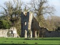 -2020-12-01 The north east tower, Baconsthorpe Castle (2).JPG
