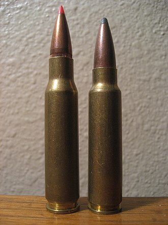 .300 Savage - Image: .300savagepic