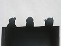 10 nina staehli shadows.JPG