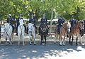 13a.MountedPolice.NPOM.WDC.15May2017 (34789938492).jpg