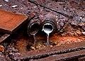 2006-12-01 Lilienhahn-Quelle 3a.jpg