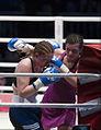 2011 boxing event in Stožice Arena-Christina Hammer V.jpg