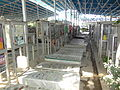 2012 Behesht-e Zahra Cemetery Tehran 7380768412.jpg
