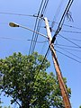 2014-08-27 13 13 38 Utility pole and street lamp at the intersection of Terrace Boulevard and Dunmore Avenue in Ewing, New Jersey.JPG