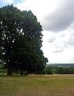 2015London, Woolwich-Plumstead, Shrewsbury Park 06