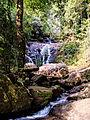 20160128 Sri Lanka 4141 Sinharaja Forest Reserve sRGB (25139102744).jpg