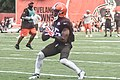 2016 Cleveland Browns Training Camp (28614277571).jpg