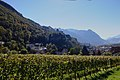 2018-10-05 Liechtenstein, Vaduz, Burg (KPFC) 05.jpg