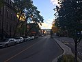 """20181013 - 39 - Montreal (Plateau) - """"The Omnipresence of the Mountain"""".jpg"""