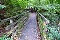 2019-09-28 Hike Stinderbachtal. Reader-19.jpg