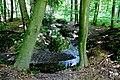 2019.05.25. Поход в лес Обербуш Ратинген. Чтец-22.jpg