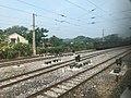 201908 Tracks at Jinzhushan Station.jpg