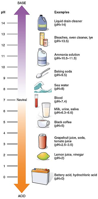 PH - pH values of some common substances