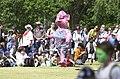 241000 - Paralympic Arts Festival show cows 4 - 3b - 2000 Sydney festival photo.jpg